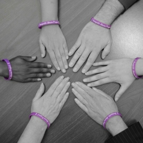 Domestic Abuse Project Of Delaware County Inc's Photo