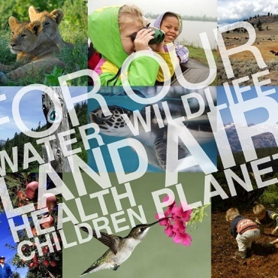 Environmental Fund Of Washington Dba Earthshare Washington