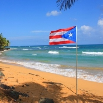 NUYORCINOS FOR PUERTO RICO Image