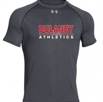 Dulaney Athletics Image