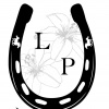 lillypondfoalrescue1's profile image - click for profile