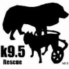 k95rescue's profile image - click for profile