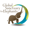 GlobalElephants's profile image - click for profile